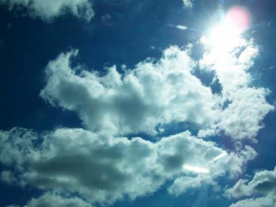 sunny-day-kristen-hurley