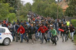 Migranter 1