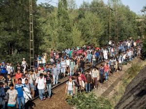 Migranter 2
